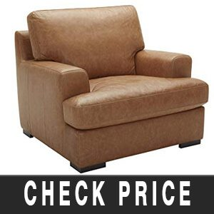 Stone & Beam Lauren Down-Filled Oversized Leather Living Room Accent Armchair with Hardwood Frame